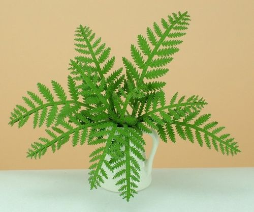 NEW - 12th scale laser cut Fern Kit