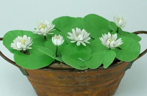 12th scale white water lily kit